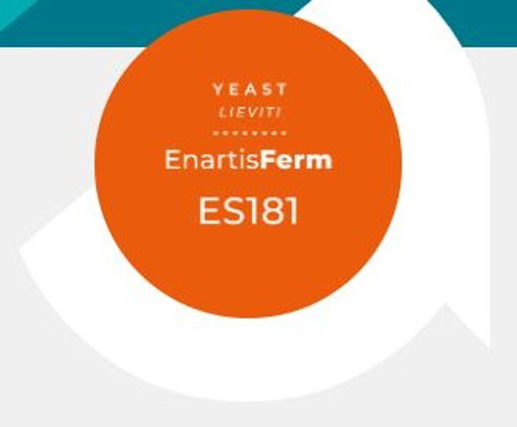 ENARTIS FERM ES181 raugs, 0.5 kg